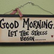 Het brein en stressreactie